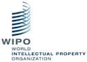 Internationaal verdrag voor toegankelijke lectuur treedt op 30 september in werking